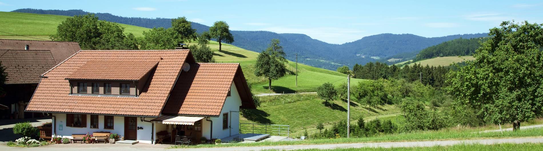 Blick auf das Leibgedinghaus und auf den Schwarzwald